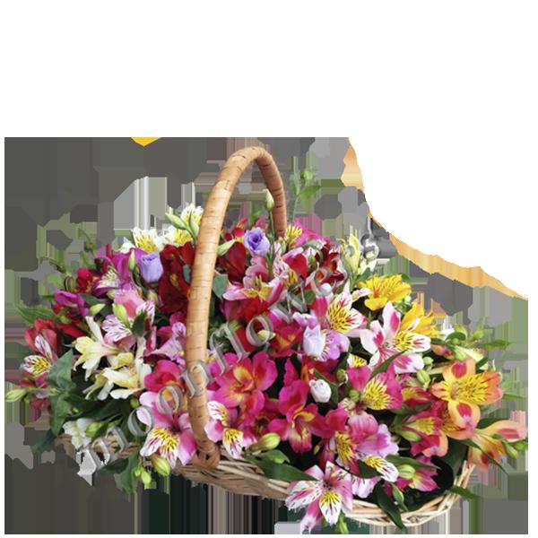 Дерево из живых цветов заказать в одессе заказ цветов луцк